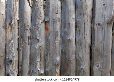 Background in style a rustic from old unpainted vertical boards with knots and the exfoliated bark