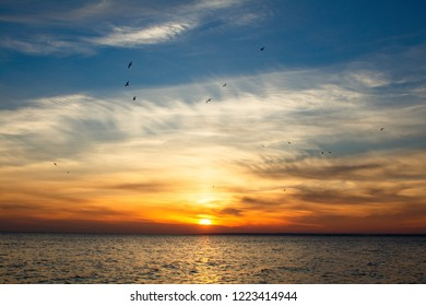 background of sunset on the sea, birds fly among the clouds lit by the rays of the sun, beautiful landscape