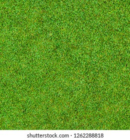 Background and texture of Beautiful green grass pattern from golf course