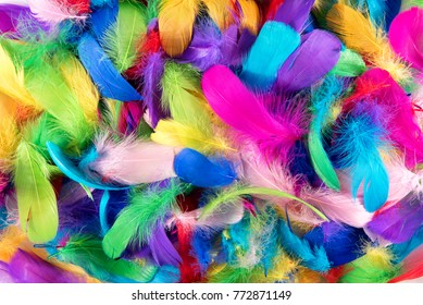 Background texture of brightly colored dyed bird feathers in the colors of the rainbow or spectrum in a random pile viewed from above in a full frame view