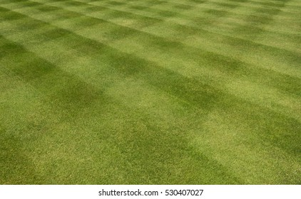 Background or Texture of a Checkerboard Pattern of Green Grass on a Lawn in a Garden in Rural Devon, England, UK