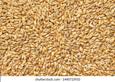 Background texture of crushed seed and grain mix for livestock and bird feed as a dietary supplement for the animals