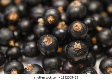 Background texture of dripping black cuurant. Close-up photo.