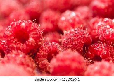 Background texture of dripping raspberry. Close-up photo.