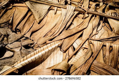 Background and texture of dry banana leaf with brown color