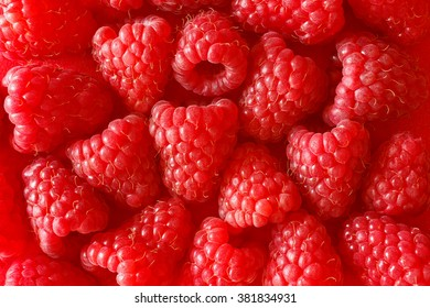Background texture of fresh raspberries, monochromatic red, copy space, copyspace