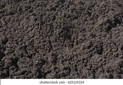 Background or Texture of Soil in Rural Devon, England, UK