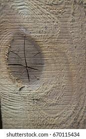 Background texture tree