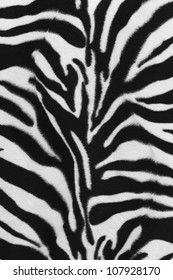 Background texture of zebra skin pattern