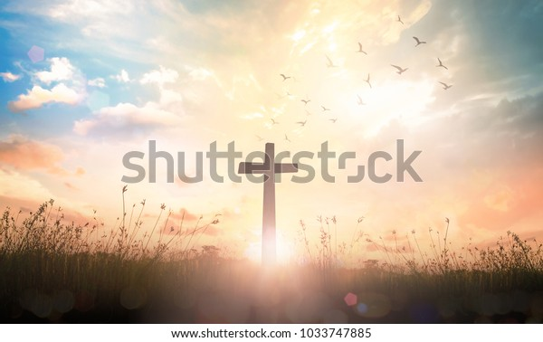 Background of thanks giving concept: Silhouette cross and birds flying on meadow autumn sunrise