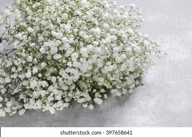 Background with tiny white flowers (gypsophila paniculata), blurred, selective focus