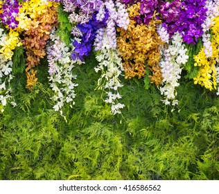 background of tropical orchids.