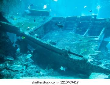 Background of underwater view