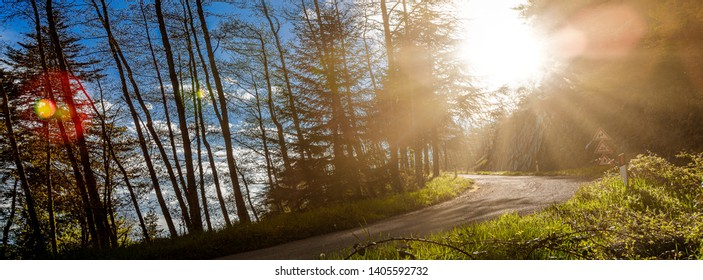 In the background uphill road, among trees and sunbeams that create fler, header for social Pratomagno, scenic spot in central Italy, Tuscany, above the Arno river, from the Tuscan-Emilian Apennines