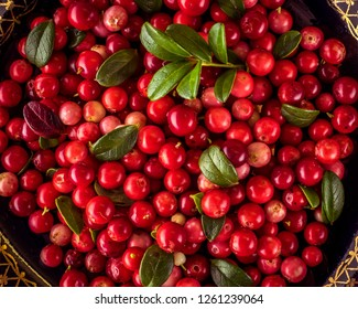 Background of Vaccinium vitis-idaea (lingonberry, partridgeberry or cowberry) Natural food of wild nature, rich in vitamins. Non GMO. Top view. Northern Europe, America and Russia.