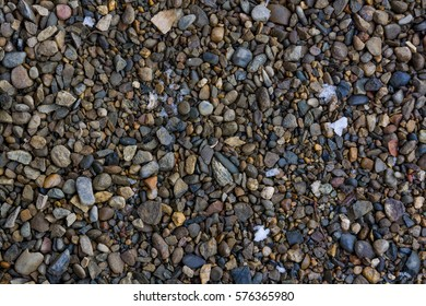 Background of wet pebble on the ground
