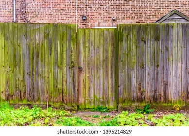 background of wooden boarded fence covered with moss in english town uk