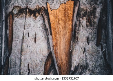 Background: a wooden cover from under the torn Wallpaper