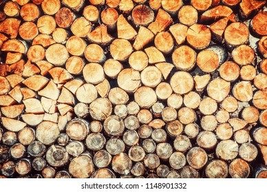 Background of wooden logs. Year rings. Wood industry. Deforestation theme. Woodpile scene. Retro photo filter.