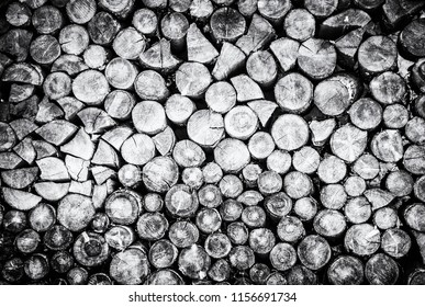 Background of wooden logs. Year rings. Wood industry. Deforestation theme. Woodpile scene. Black and white photo.