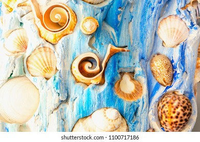Background with yellow seashells on a background of blue beach, closeup