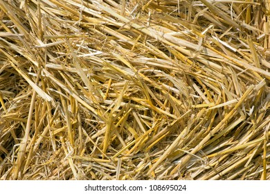 background from the yellow straw