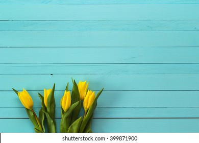 Background with yellow tulips on blue painted wooden planks. Place for text.  Top view with copy space
