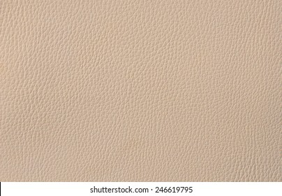 Pebbled Leather Images Stock Photos Vectors Shutterstock
