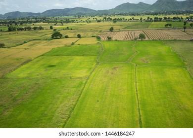 Backgrounds Textures Field grass green