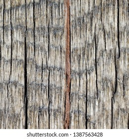 Backgrounds and textures: rough weathered wooden plank texture, exterior wall or floor or roof of rustic building