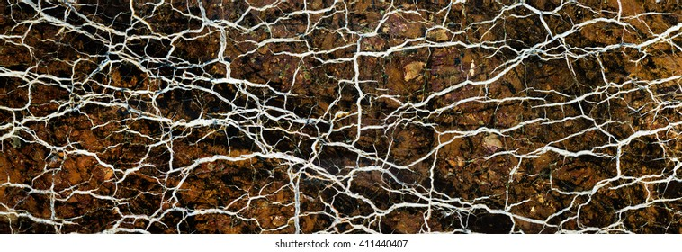 Backgrounds and textures: surface of beautiful brown-white decorative stone, abstract pattern of swirls, twirls, lines, cracks, spots and stains, natural background