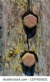 Backgrounds and textures: two rusty screws in old weathered wooden plank