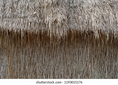 Backgrounds Textures wall Hay