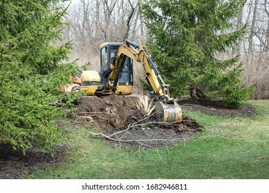 Backhoe Digging Out Tree Stump