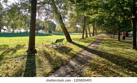 Backlight in the park with trees, garden, benches and people