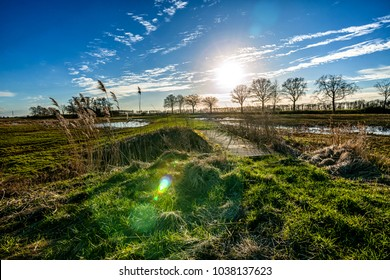 Backlight photo with view of grassland and a sunny sky in the background during winter period in the Netherlands