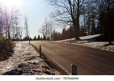 Backlighted photo with sun spot: Country road in a winter landscape, big tree on the right side, thaw, Allgau, Bavaria