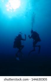 Backlit divers
