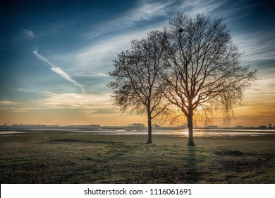 Backlit image of a dramatically colored rural landscape with two leafless trees silhouetted against the bright sun. It is at the end of a sunny winter day in the Netherlands.