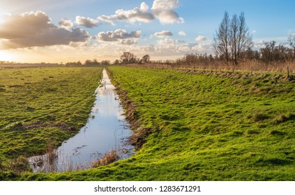 Backlit image of a Dutch polder landscape at the end of a sunny day in winter. The photo was taken in National Park De Biesbosch, North Brabant.