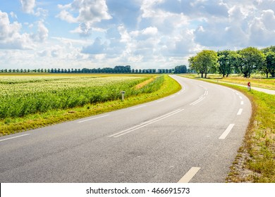 Backlit image of a meandering asphalt road through a rural area in the Netherlands. It's summer; on the left side of the road is a large field of flowering potato plants.