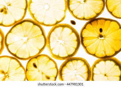 Backlit lemon slices and seed on a white background.