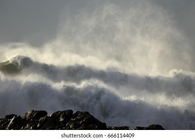 Backlit rough sea waves spray at sunset. Northern portuguese coast.
