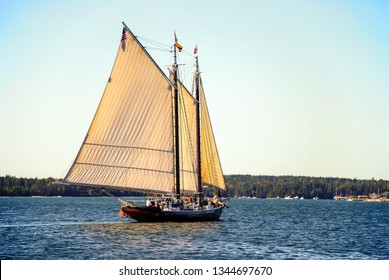 Backlit Sails of vintage Schooner billow in stiff breeze as schooner navigates the coast of Maine.