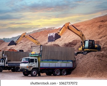 Backoe pick up woodchips from trucks and storage in outdoor yard , Pile of wood chips to storage in outdoor yard for export.