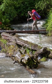 Backpacker is crossing mountain river by wooden log in Altai mountains, Russia