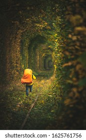 Backpacker male person is walking down the rail path in one direction through the tunnel of love in Ukraine. Autumn moody dramatic empty background around.