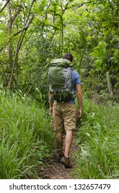 A backpacker on the trail.