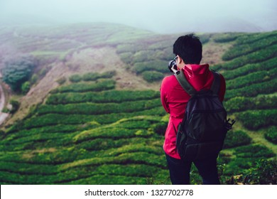 Backpacker traveling into tea plantation, Cameron Highlands Malaysia