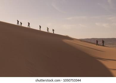Backpackers walking (trekking) along a ridge of orange sand dunes in the Sahara Desert in Morocco.